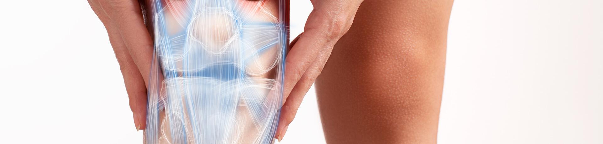 Knorpelzelltransplantation